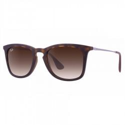 Ochelari de soare unisex Ray-Ban RB4221 865/13